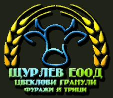 shturlev_logo